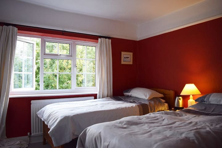 Sunny twin/double room near Downs - Westergate, Chichester  - Bed & Breakfast