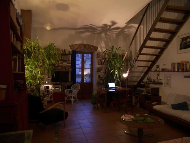 beautiful apartment in heart Turin - Turin - Apartemen