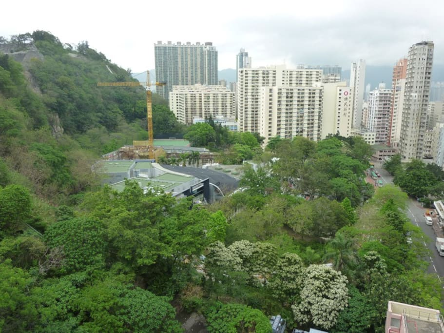 The view from the window, it is the Ko Shan Theatre and the Park.
