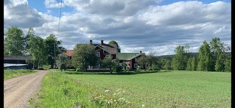 Mysig stuga i vackra Rengsjö /Hälsingland.