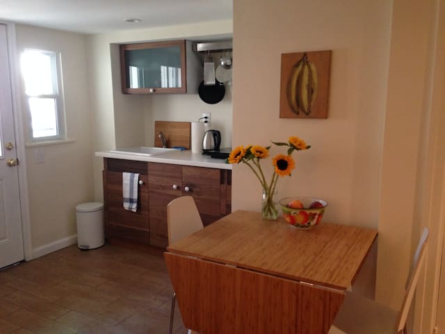 Beautiful apt in Bushwick Ridgewood - Ridgewood - Apartment