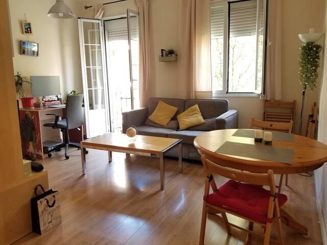 Beautiful apartment next to Plaza de Toros