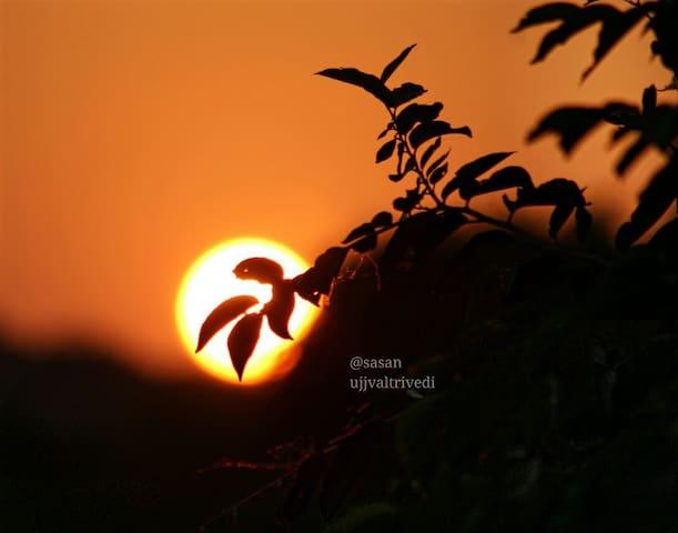 Hiran Holidays - Gujarat - Casa