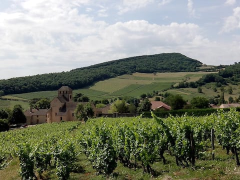 Flat 10 km away from Cluny, Mâcon and Solutré
