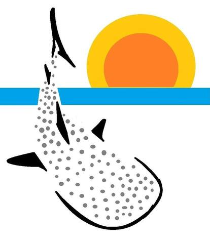 Whale shark Lodge Mafia island