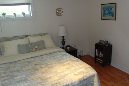 1 bedroom basement apartment - Fredericton