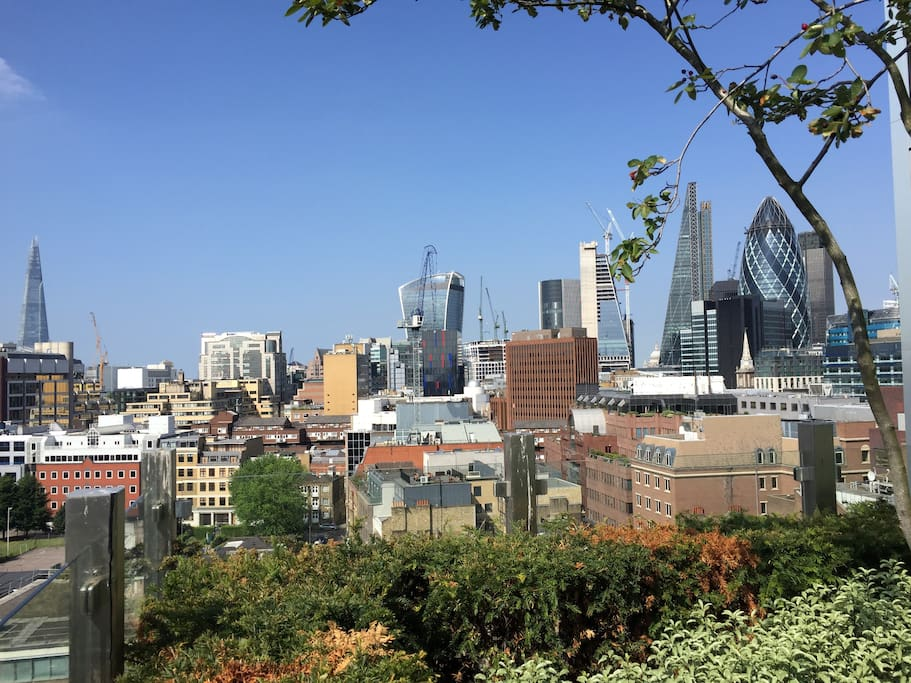 Fantastic roof top views of London's skyline