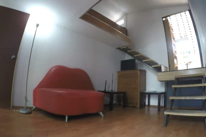 Nice Studio, 50 mts of terrace.