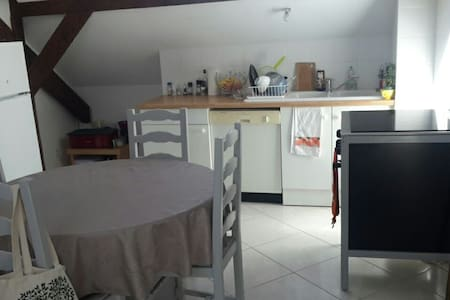 Bel appartement frontaliers. - Apartment