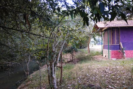 Jungle Cabin, Bandipur, Deep Jungle Home