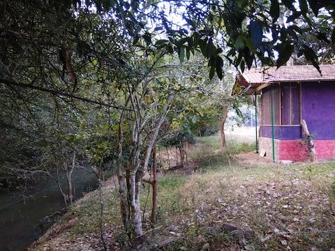 Jungle Cabin, Bandipur, Deep Jungle Home