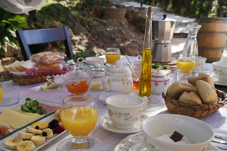 Desayuno mediterráneo bajo los árboles.