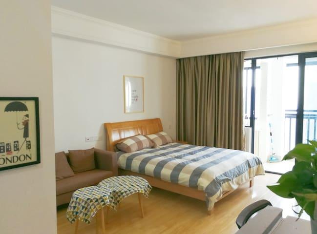 位于政务边兴园两个肥宅攻城狮经营的无敌山景一览高新公寓,合肥二胖