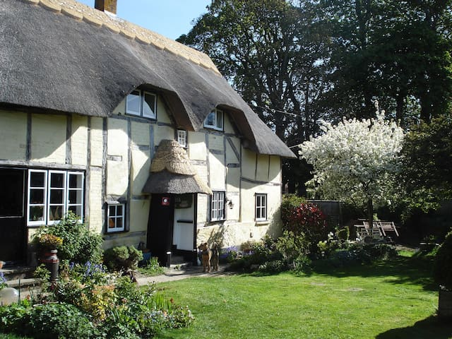 Appletree Cottage, SP11 8QB - Hampshire - Bed & Breakfast