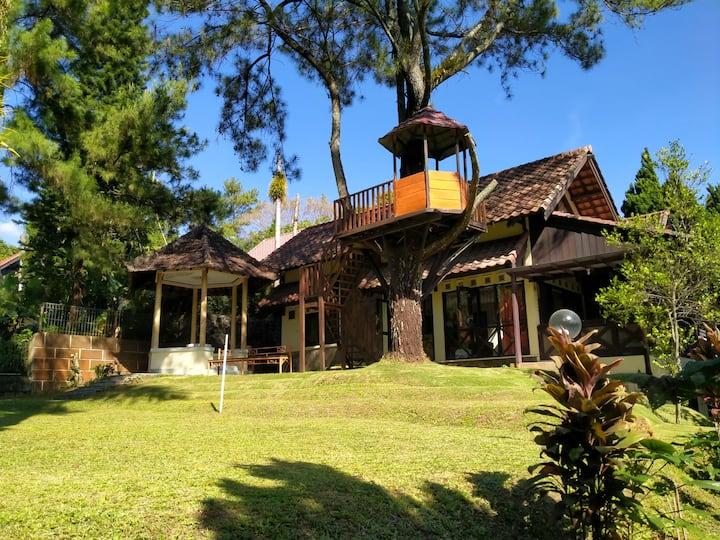 Villa Lincy Grand Trawas