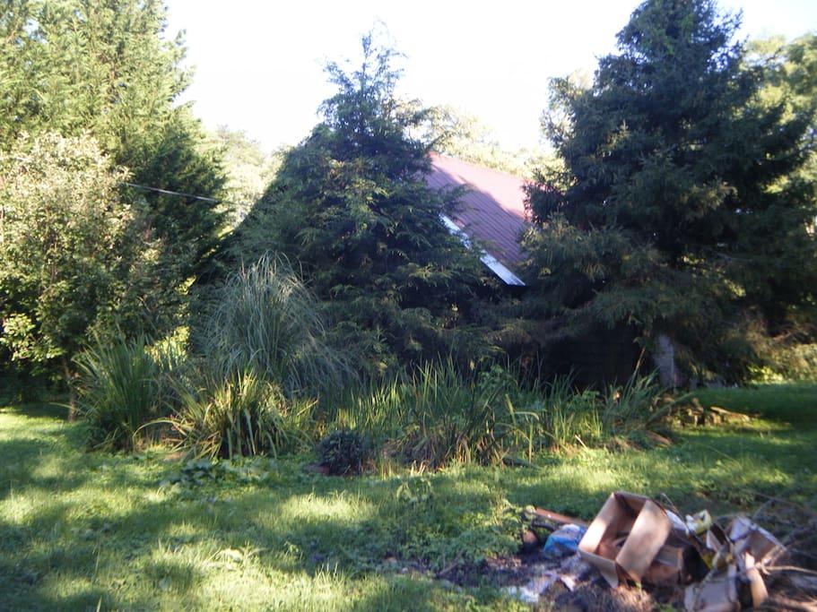 The property looks like like it needs major repair so feels authetic.