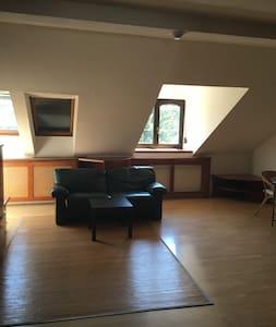 Schöne Wohnung in ruhiger Lage, freies Parken - Vienna