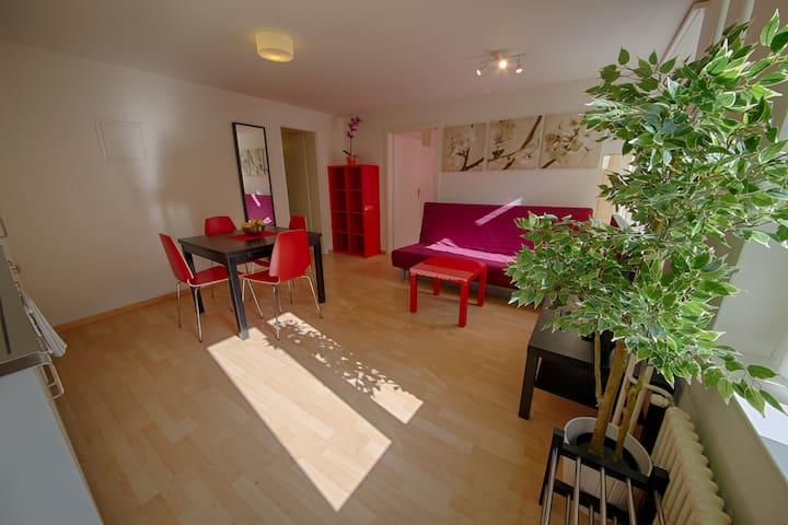 Stauffacher Apartment- Raffael