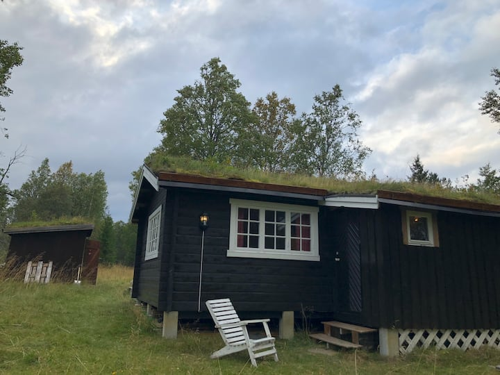 A nice, cozy and simple norwegian cabbin