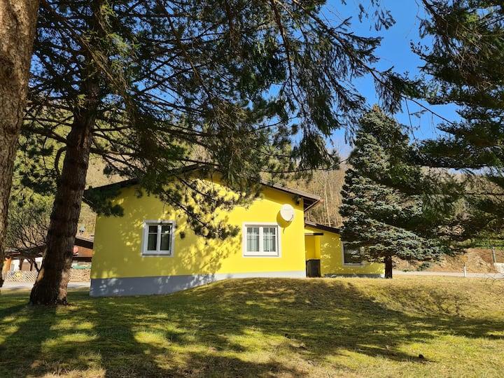 Ferienhaus im Naturparadies Türnitz