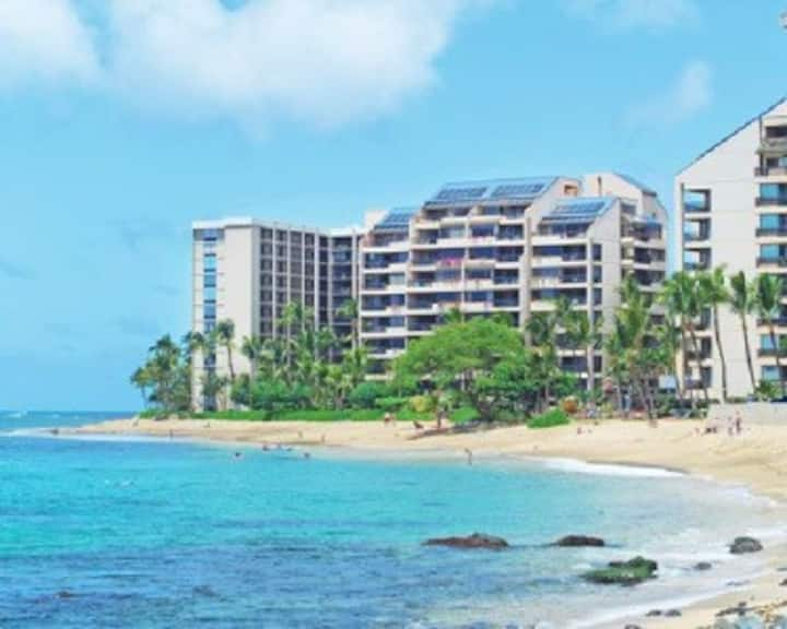 Sands of Kahana OCEAN front 2bd/2bt