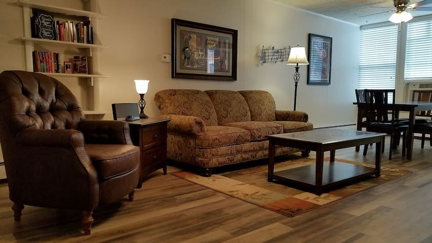 New Downtown One BR Suite- convenient to downtown!