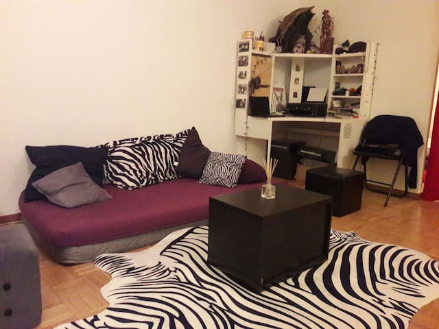 Cosy, cute & quiet 2 rooms flat 50m2 - Genève