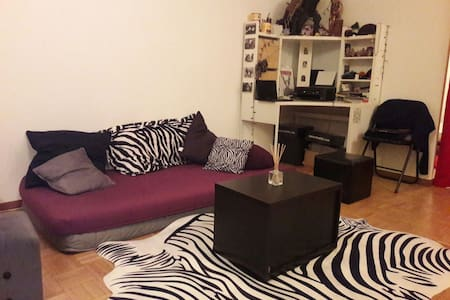 Cosy, cute & quiet 2 rooms flat 50m2 - Genebra