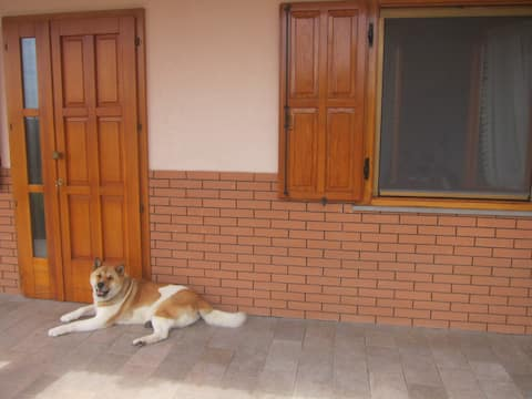 Hangulatos apartman középen Friuli