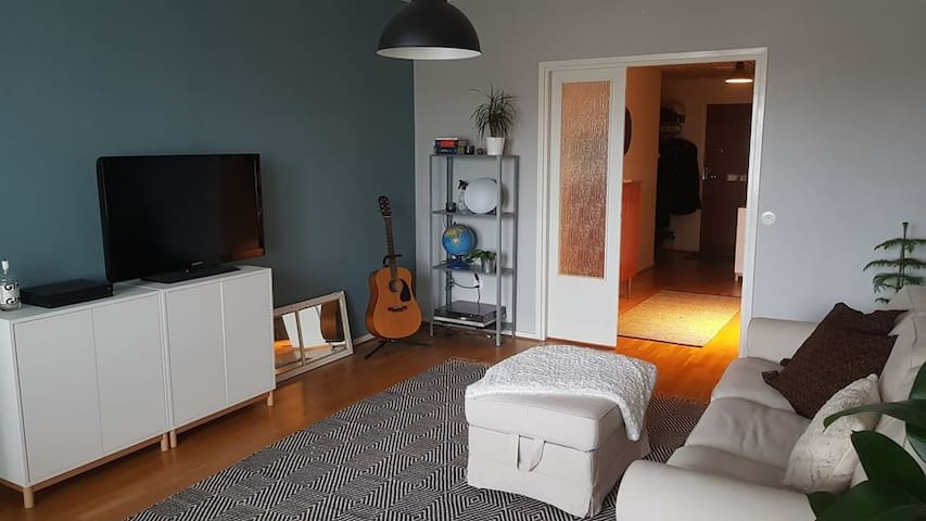 Cosy 3-room appartment next to the city centre
