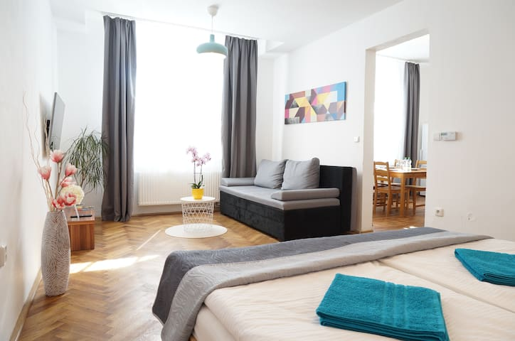 Spacious apartment in the city center + parking