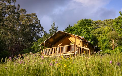 Naterra's Tent. Hut in nature.