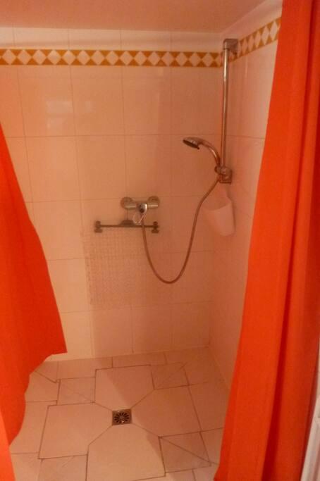 Salle d'eau. Douche très large