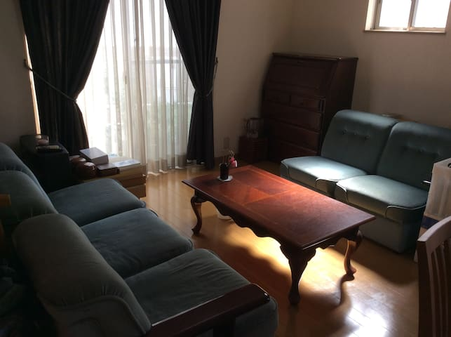 between the airport and Nagoya-1- - Tōkai-shi - House