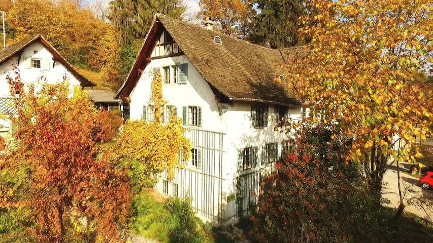 Exceptional Event Location with Accommodation - Hombrechtikon - Hus