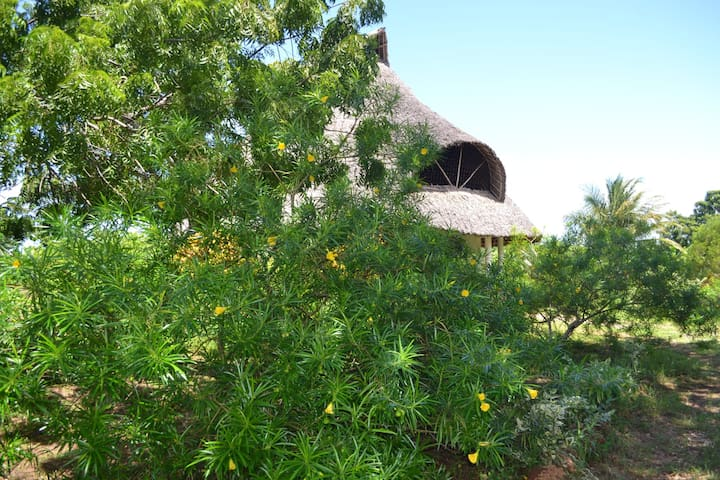 Private Room in Galu Beach Home with Large Garden