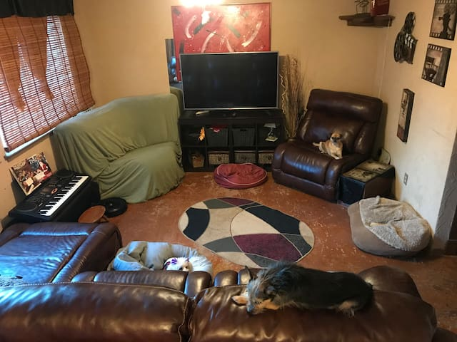 Back living room.  My babies chillin , if you can see them.