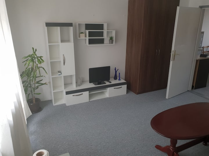 APARTMAN - 10 min from center