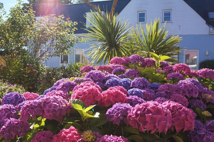 Ellingham, St Martins - Courtyard Terrace Cottage