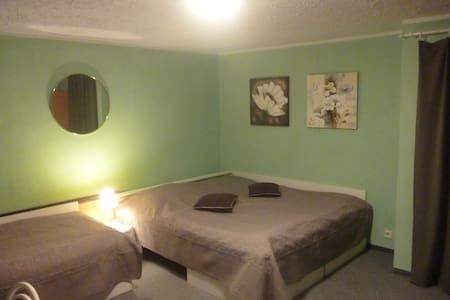 Levné ubytování v penzionu Tereza - Kraslice - Bed & Breakfast