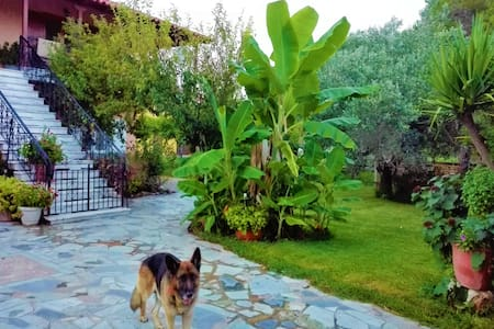 Cottage House,with big garden & lawn,at Kourouta.