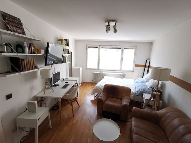 Small Flat (36m2) in the center of Vienna