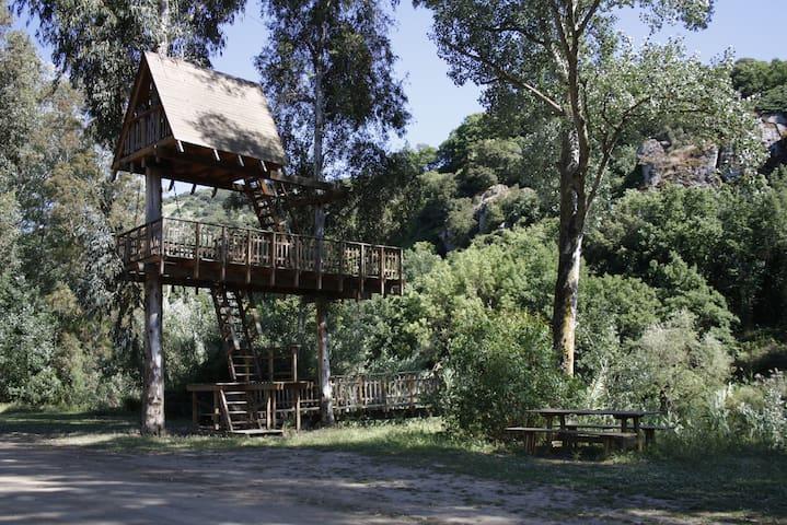 Casa sull' Albero -Allai-
