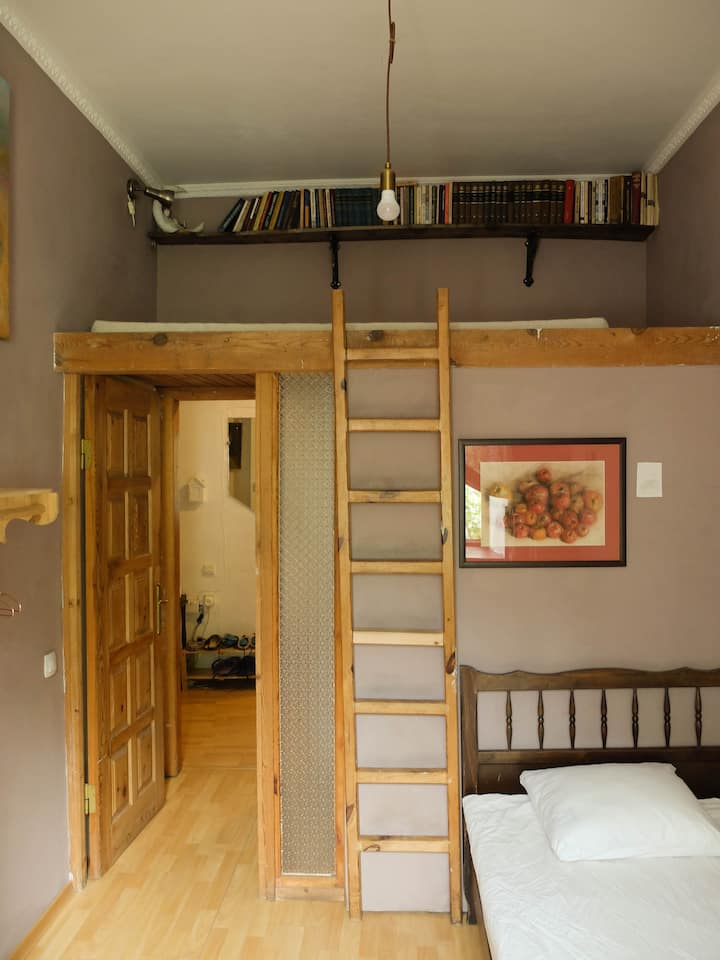 Romantic and cozy room with a loft bed