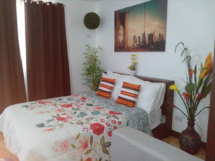 Spacious Furnished Studio-Wifi-Netflix-free movies