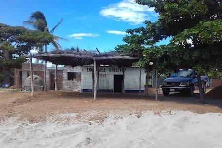 Enramada Veracruz - Guelaguechi