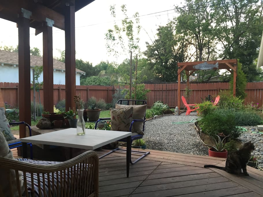 backyard with cover patio and garden