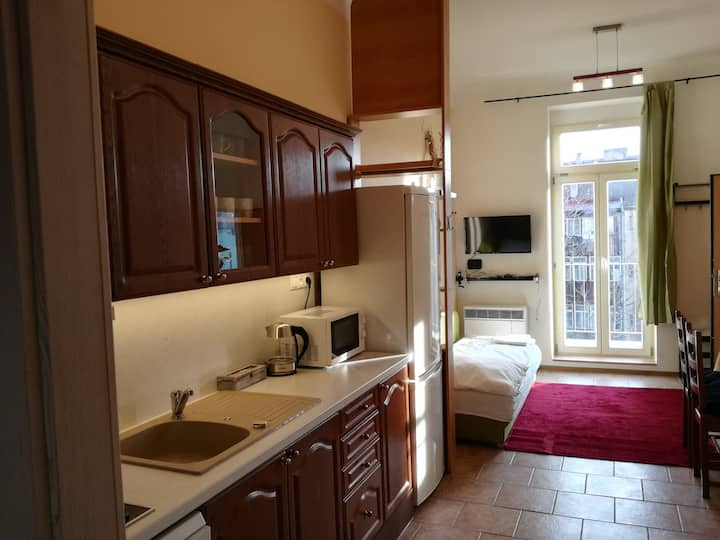 One-bedroom apartment with balcony, Prague Zizkov