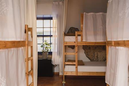 Ashavana Hostel/Habitación compartida mixta