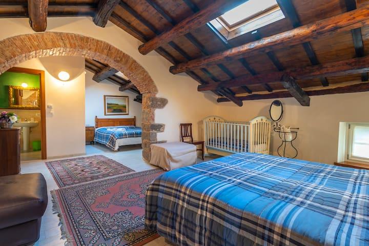 Casa di Matilde - Camera Celtica